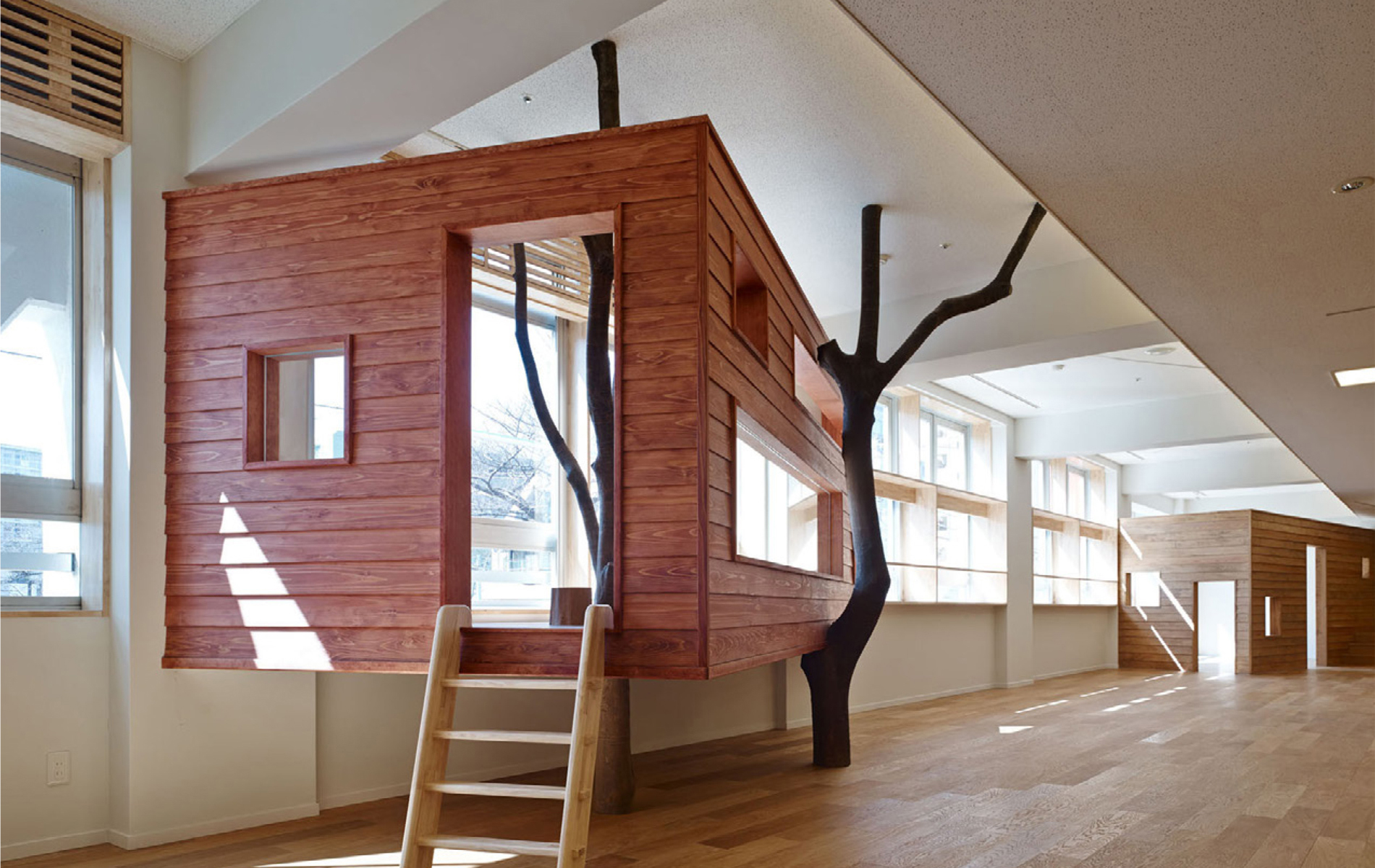 arquitectura y diseño de interiorismo en coles